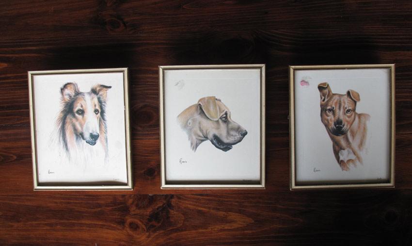 framed-dogs