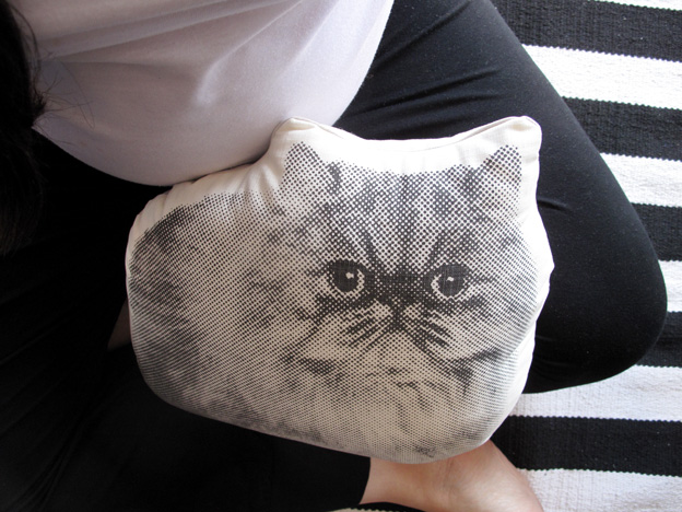 cat-cushion