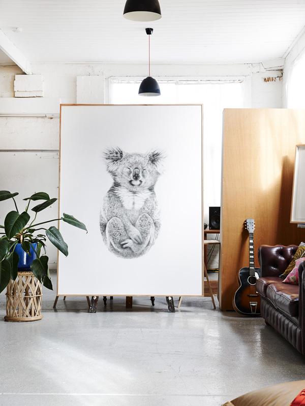 Carla-koala