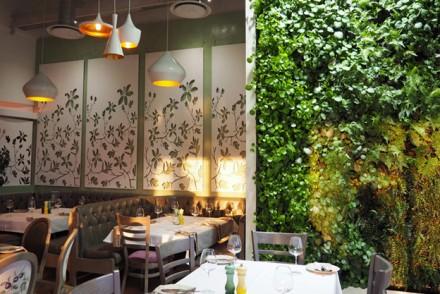 Cafe-Dol-Sol-Botanico_-21
