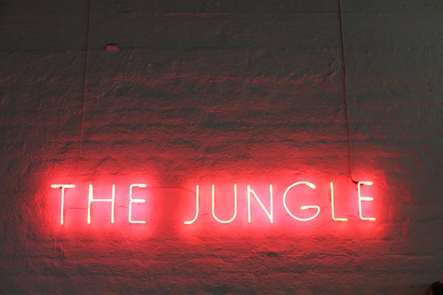 the-jungle-4