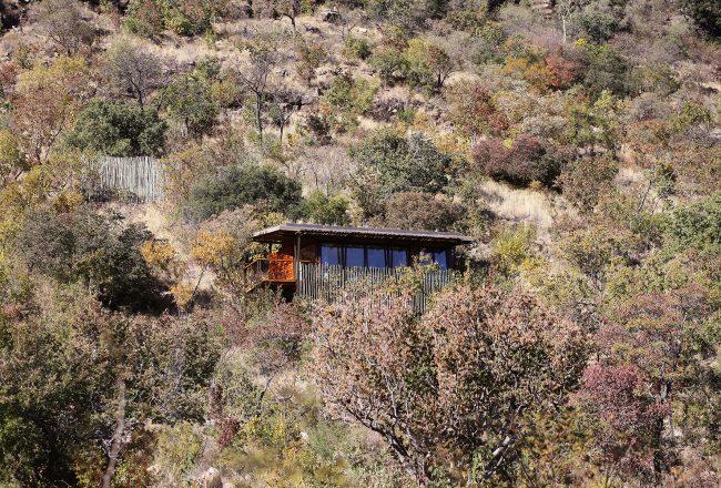 Marataba-Trails-Lodge-14