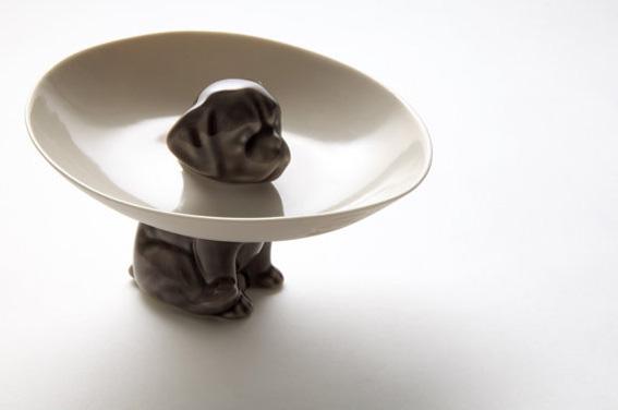dog-plate