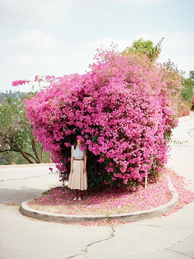 hfb_middie_floral_tight-052_n