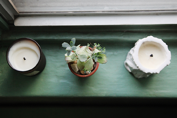 Candles-plant