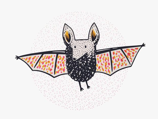 paper-jet-bat