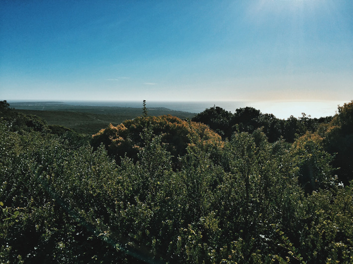 grootbos-nature-reserve-2