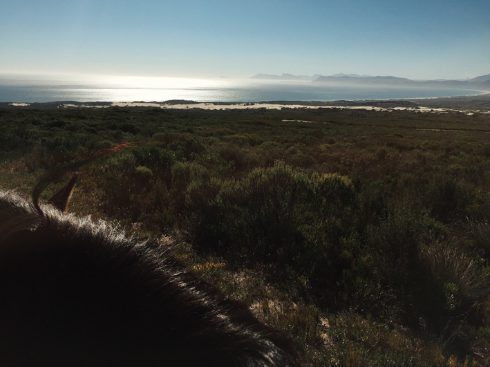 grootbos-nature-reserve-4