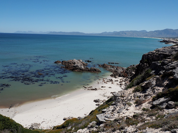 grootbos-nature-reserve-8