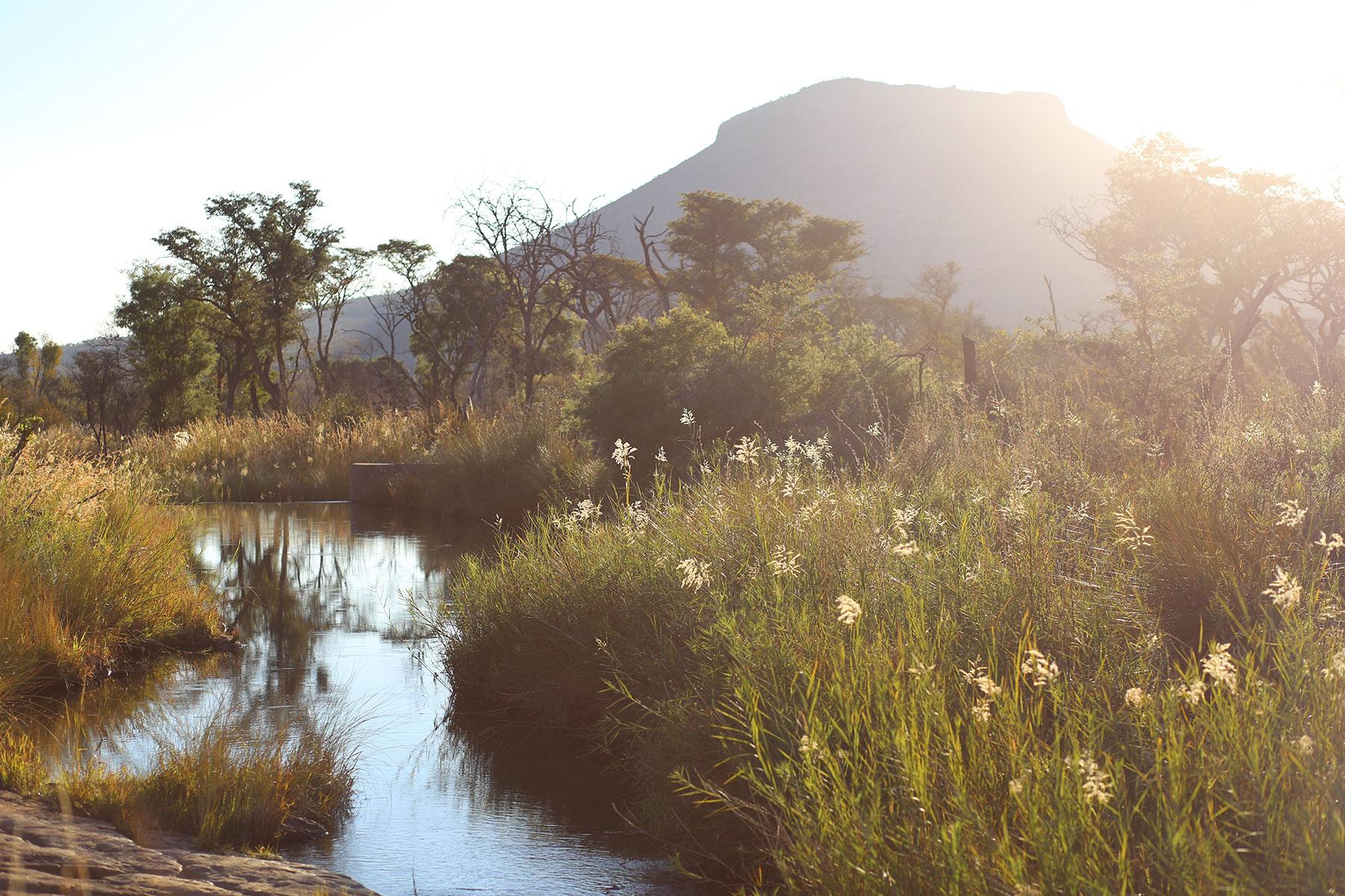 Marataba-Trails-Lodge-21