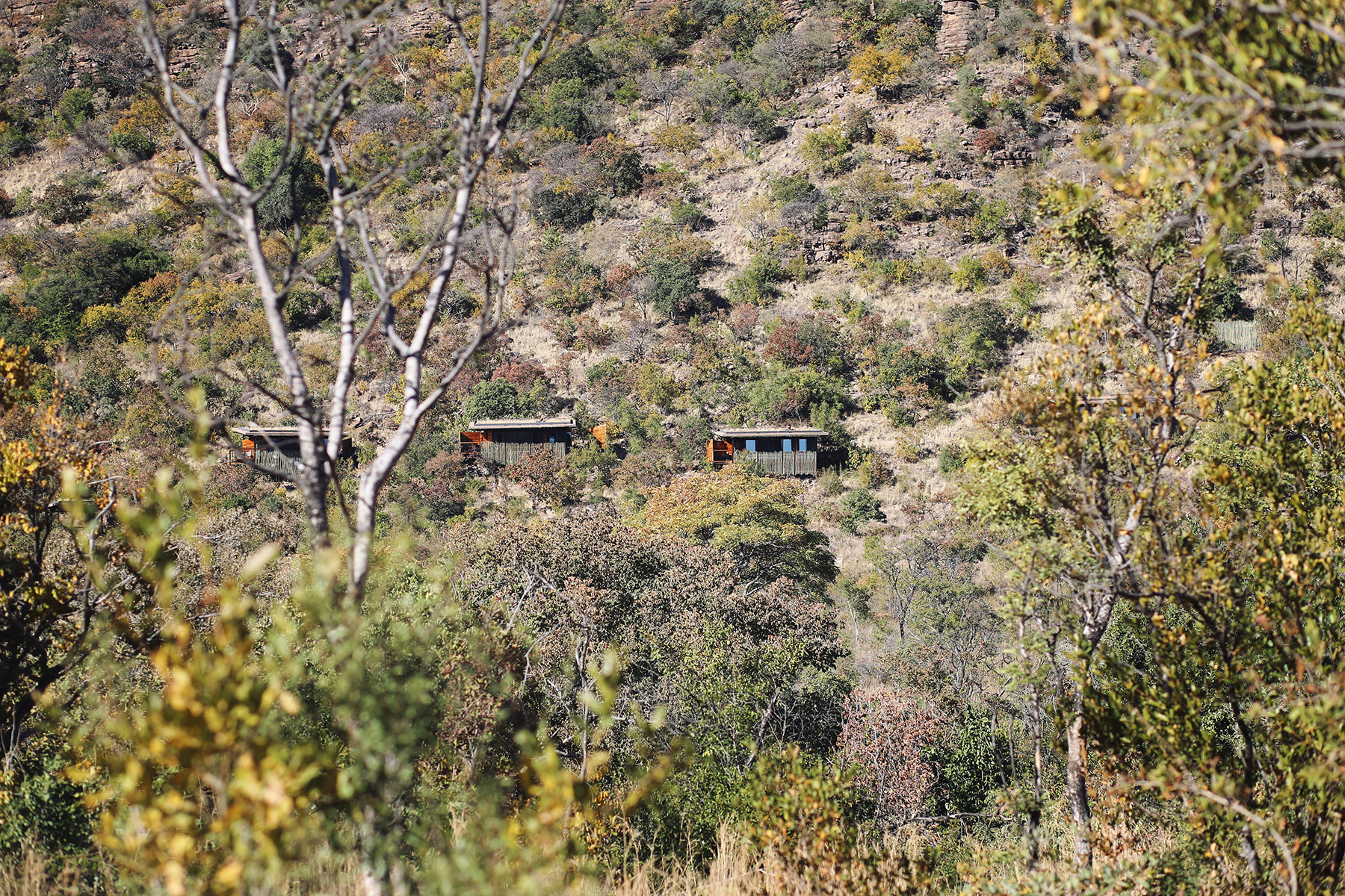 Marataba-Trails-Lodge-4
