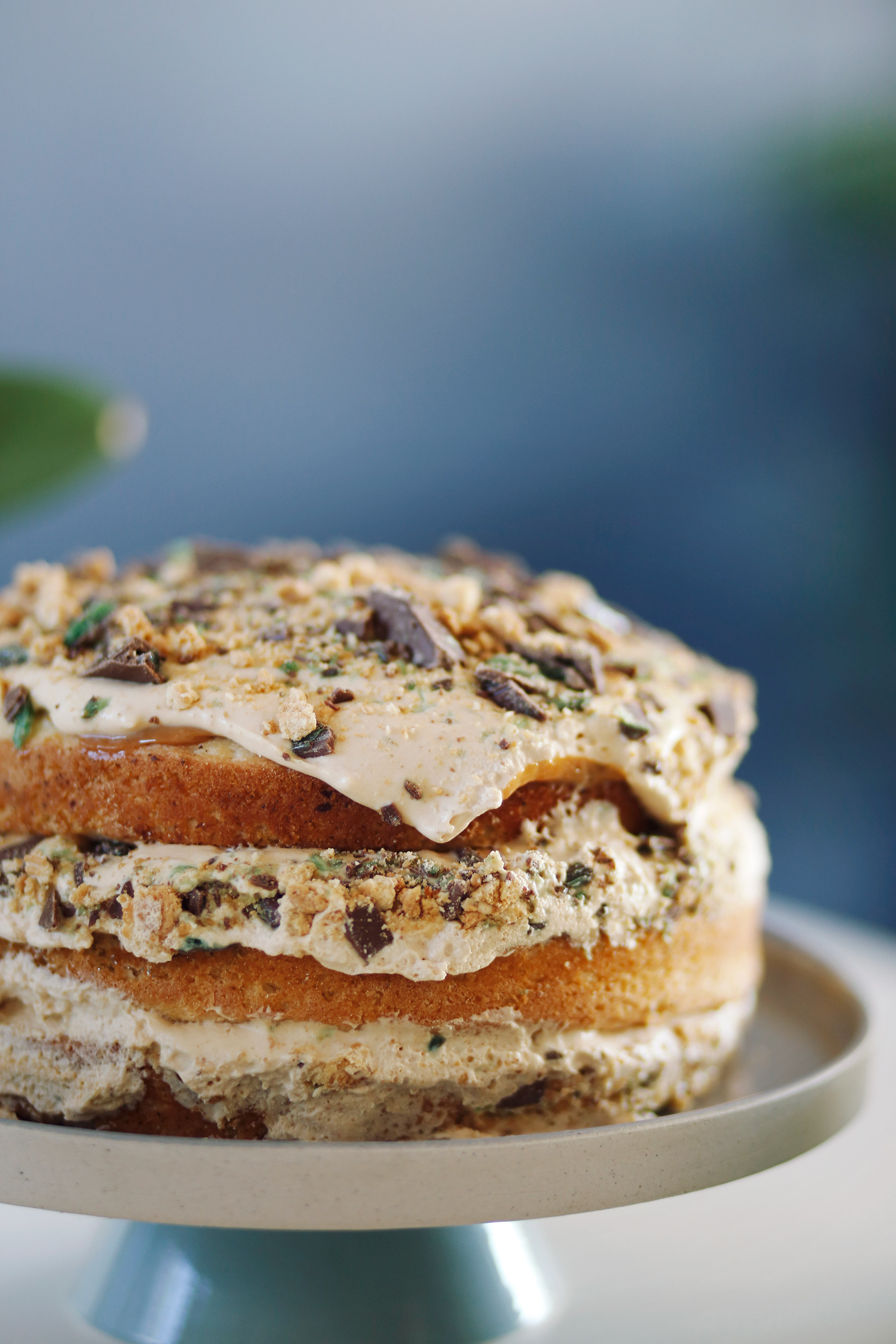 Peppermint-Crisp-Mousse-Cake-8