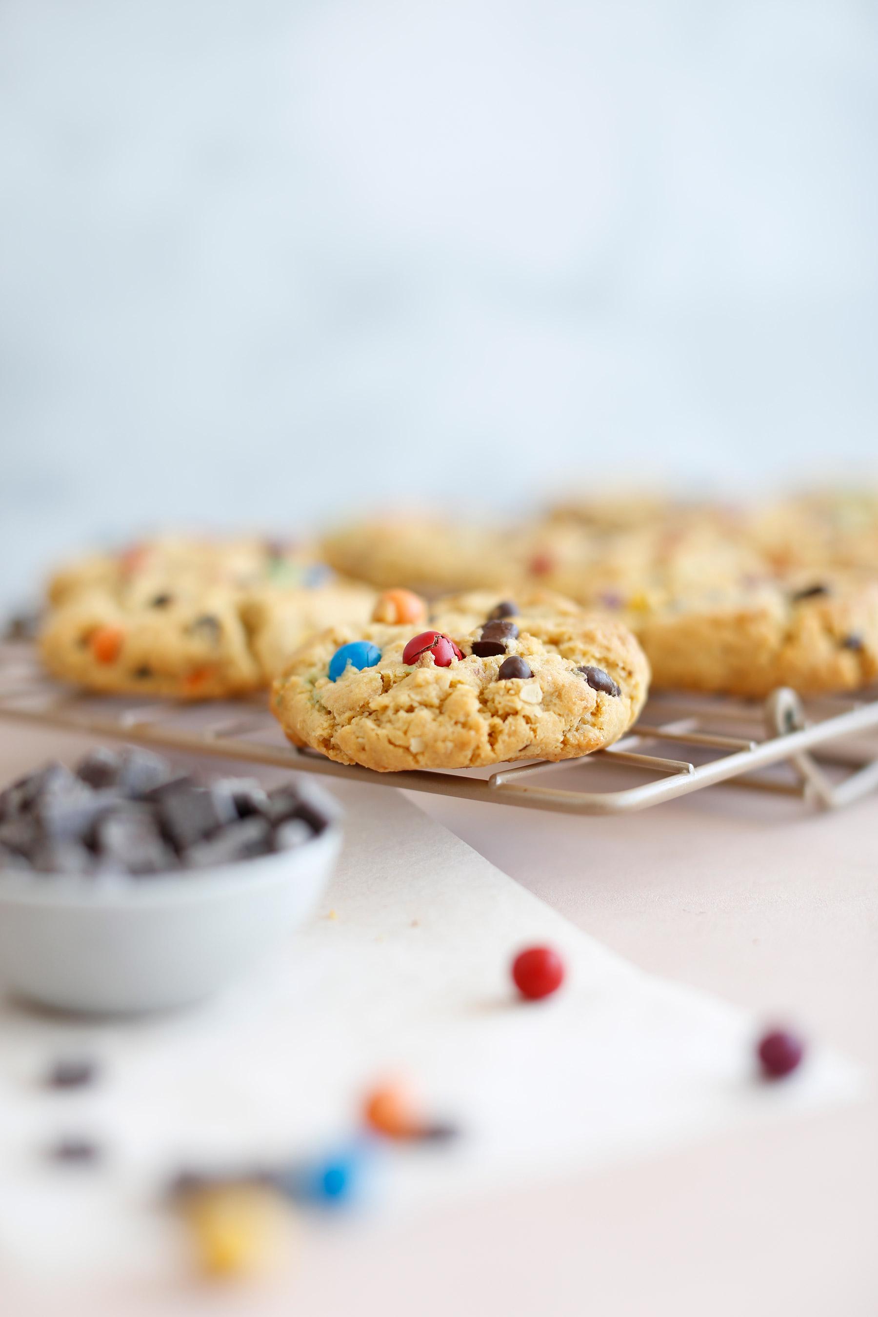 Cookie-Monster-Cookies-5